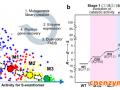 上海交大团队在酶定向进化的超高通量筛选领域获进展