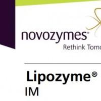 求购诺维信固定化酶制剂lipozyme TLIM